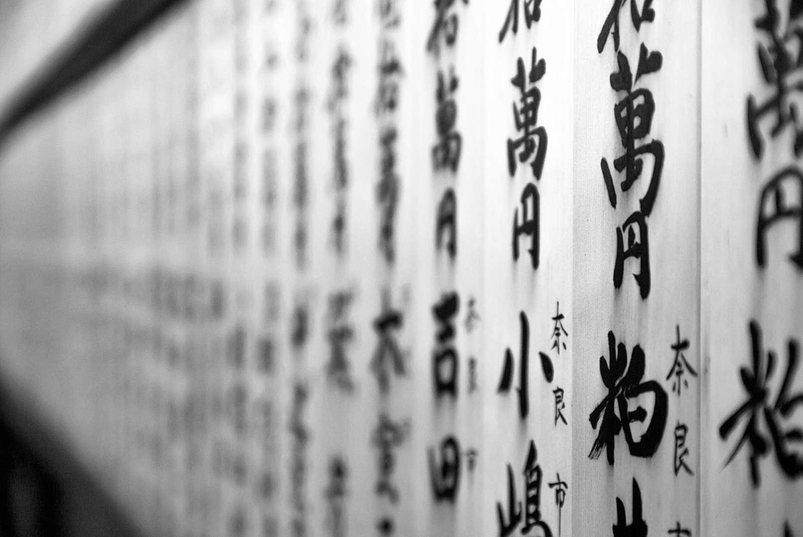 Kanjis y caligrafía japonesa en fondo blanco.